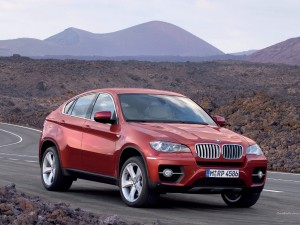 2010 BMW X6 Picture